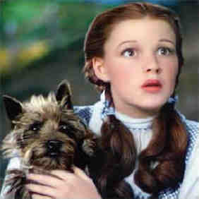 Emerald_dorothy_and_toto_pl