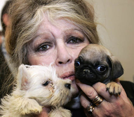 Brigitte-Bardot-and-animals-922659