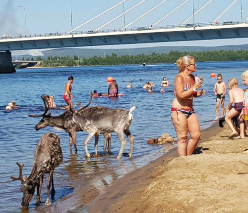 Heat wave in Finland