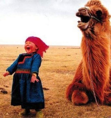 Girl-and-laughing-camel-2