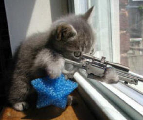 Sniper_kitty_marine